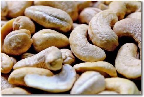 cashew (1).jpg